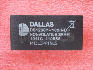 DS1230Y-100IND