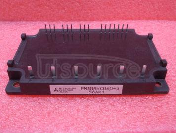 PM30RHC060-5