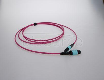5m (16ft) MTP Female to Female 12 Fibers OM4 50/125 Multimode Trunk Cable, Type A, Elite, Plenum (OFNP), Magenta