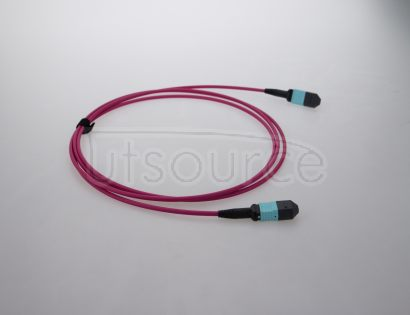 3m (10ft) MTP Female to Female 12 Fibers OM4 50/125 Multimode Trunk Cable, Type B, Elite, Plenum (OFNP), Magenta