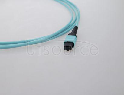 3m (10ft) MTP Female to MTP Female 24 Fibers OM3 50/125 Multimode Trunk Cable, Type C, Elite, LSZH, Aqua