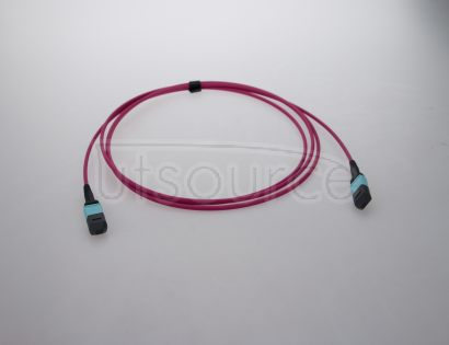 2m (7ft) MTP Female to MTP Female 24 Fibers OM4 50/125 Multimode Trunk Cable, Type C, Elite, LSZH, Magenta Key up to Key down, 0.35dB IL, 3.0mm Cable Jacket, designed for 100GBASE-SR10 CXP/CFP Interconnect Solution and high-density data center.