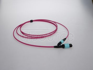 10m (33ft) MTP Female to MTP Female 12 Fibers OM4 50/125 Multimode Trunk Cable, Type B, LSZH, Magenta