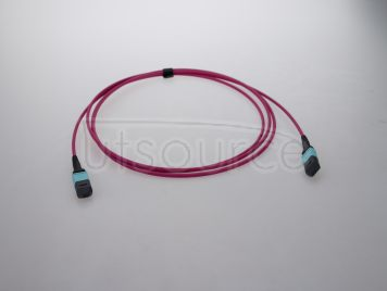 2m (7ft) MTP Female to MTP Female 12 Fibers OM4 50/125 Multimode HD Trunk Cable, Type A, LSZH, Magenta