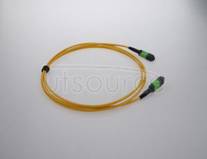 5m (16ft) MTP Female to Female 12 Fibers OS2 9/125 Single Mode Trunk Cable, Type B, Elite, Plenum (OFNP), Yellow