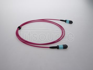 10m (33ft) MTP Female to MTP Female 12 Fibers OM4 50/125 Multimode HD Trunk Cable, Type B, LSZH, Magenta