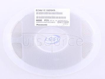 PANASONIC ECHU1C102GX5