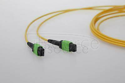 3m (10ft) MTP Female to Female 12 Fibers OS2 9/125 Single Mode Trunk Cable, Type A, Elite, Plenum (OFNP), Yellow Key up to key down, 0.35dB IL, 3.0mm cable jacket, the MTP trunk cable is designed for high-density cabling applications.