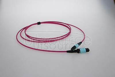 5m (16ft) MTP Female to Female 12 Fibers OM4 50/125 Multimode Trunk Cable, Type B, Elite, Plenum (OFNP), Magenta