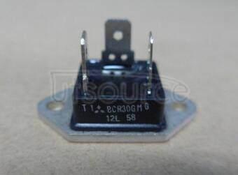 BCR30GM-12L