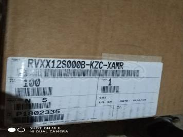 RVXX12S000BKZCXAMR1
