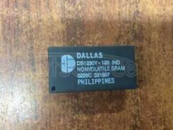 DS1230Y-120IND