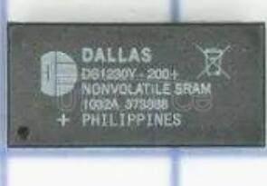 DS1230Y-200+