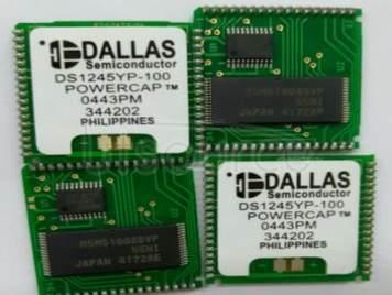 DS1245YP-100