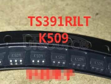 TS391RILT