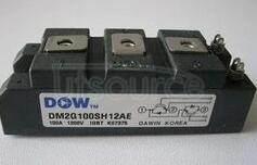 DM2G100SH12AE