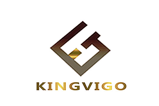 SHENZHEN KINGVIGO TECHNOLOGY DEVELOPMENT CO.,LTD