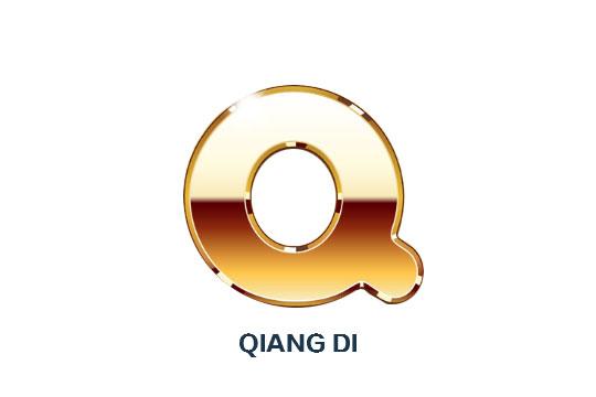 Qiang Di Electronice Co.,Ltd